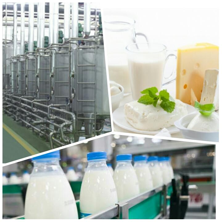 کاربرد بخار برای فرآوری شیر و تولید محصولات لبنی